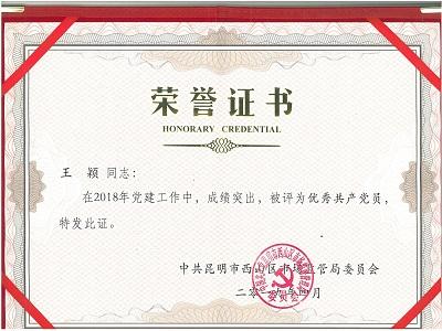 """""""优秀共产党员""""荣誉证书"""