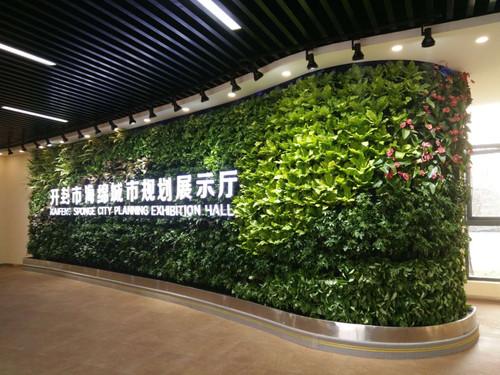 室内外植物墙
